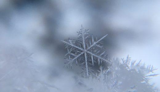 旭川冬まつり2019の期間とゲストやアクセスをチェック!