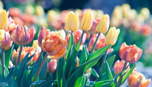 2019年春に流行の春アウターとコーデをチェック!