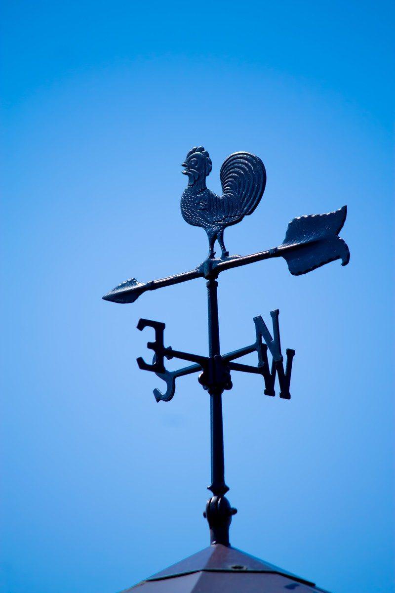 ノートルダム大聖堂の十字架や風...